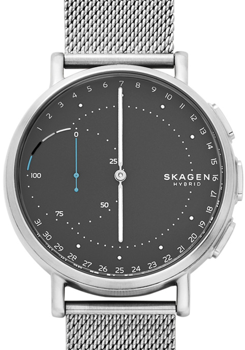 Skagen Competition Watch